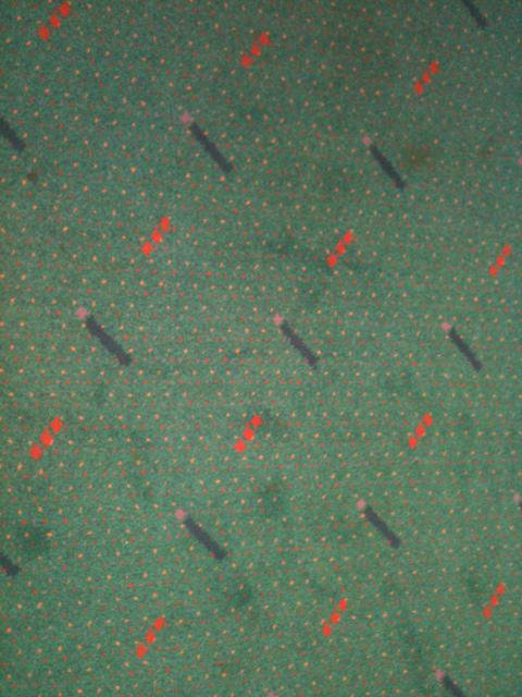 @pdxcarpet BTW, what's up with…